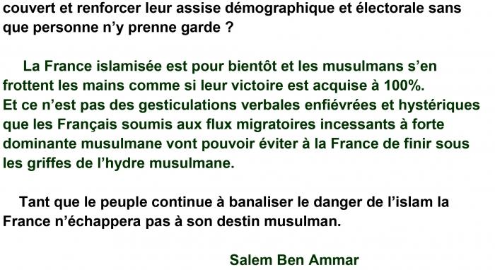 SALEM_BEN_AMMAR1-3.jpg