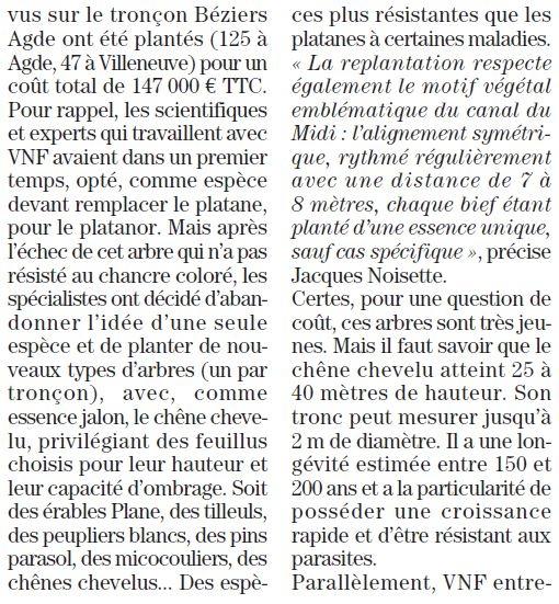 Plantations-4.JPG
